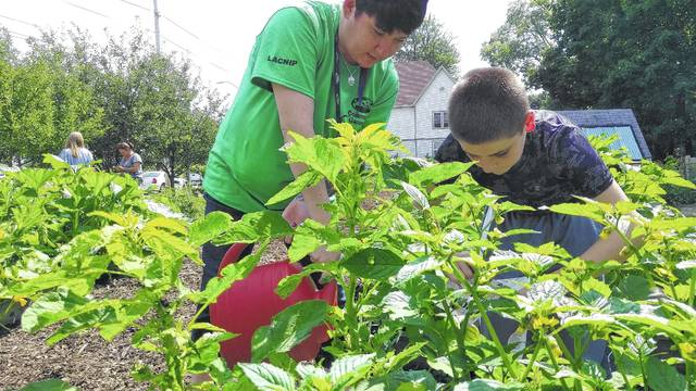 SAFY Outreach Coordinator Heather Hatcher, Left, And Russell Clark, 12,  Tend To