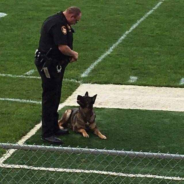 Submitted photo Zeus the K-9 police dog and his handler perform a demonstration for local second-graders.