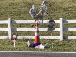 Get This: 'Cone Weed' gets Christmas makeover in North Carolina town