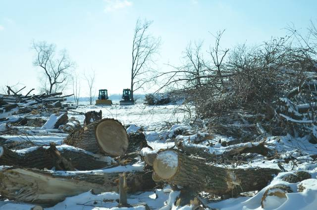 The trees and brush have been torn down at Frey's Channel at Grand Lake in St. Marys as the Ohio Department of Natural Resources prepares to construct a new Dredging Material Relocation Area for use beginning next spring. The wood and brush is free to the public, as long as anyone interested in picking some up is willing to cut and load it themselves.