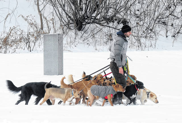 A dog walker controls multiple canines on a walk at Congress Park in Saratoga Springs, N.Y., in December 2016. Starting a business is often a pricey ordeal, but no- to low-cost ideas exist for aspiring entrepreneurs with unique and marketable talent. Americans shell out big bucks when it comes to their pets. If pets are your passion, you can start a dog-walking or pet-sitting business for little to no money.