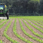 Farmers in the Greater Lima Region finish up planting season