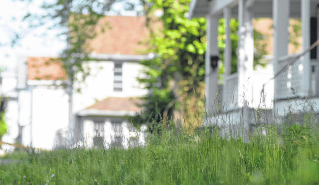 Grass continues to grow tall on properties along East Kibby Street in Lima.